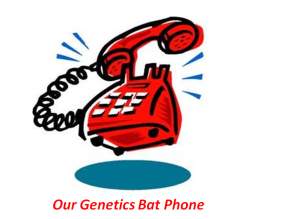 genetics bat phone